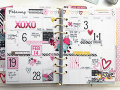 February in my Carpe Diem Planner