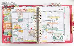June in my Carpe Diem planner