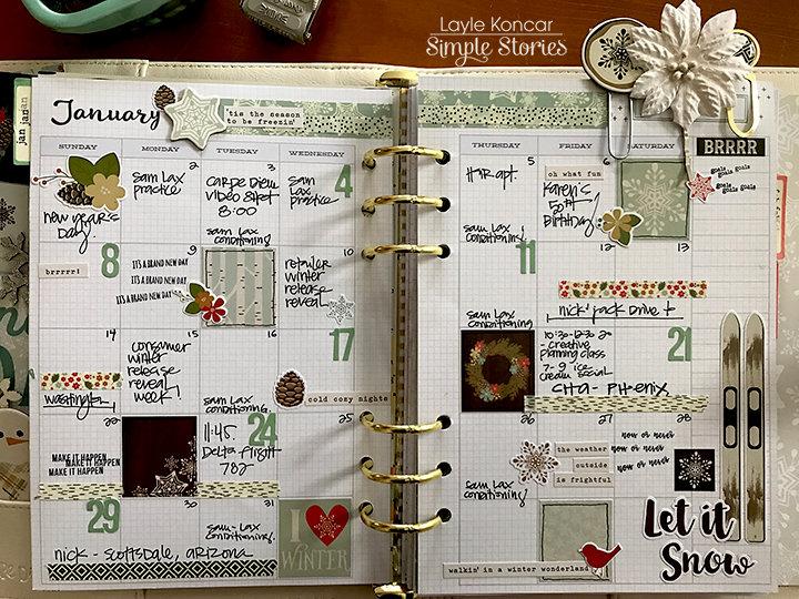 January in my Carpe Diem Planner