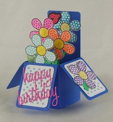 Box Die Birthday Card view 2