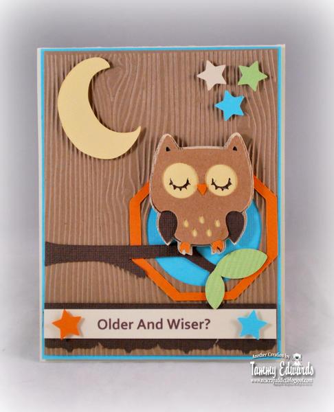 Older and Wiser?
