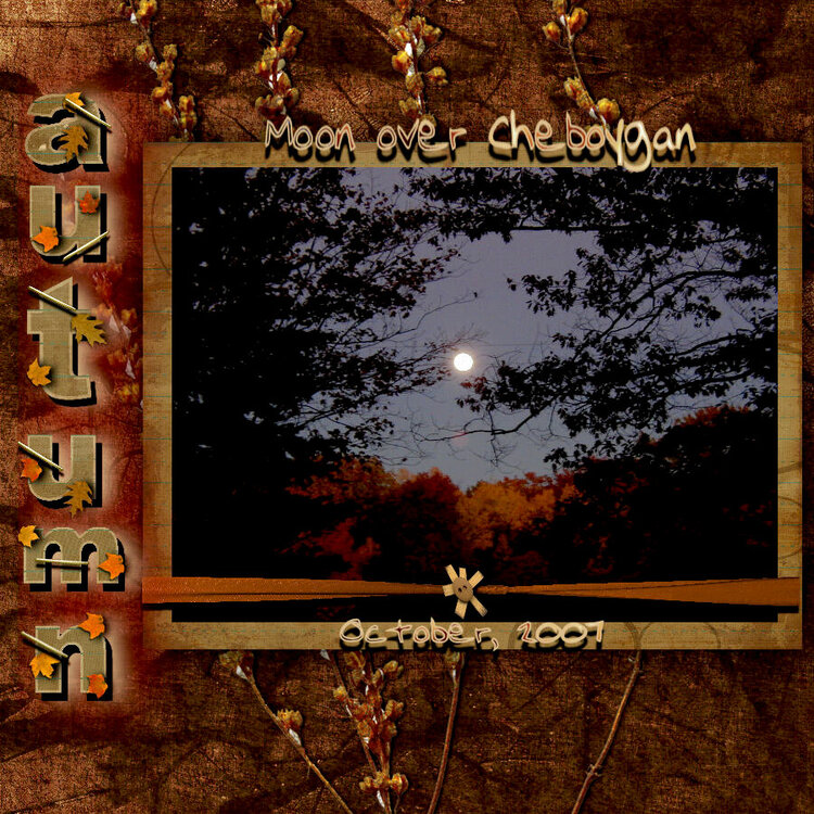 Moon Over Cheboygan