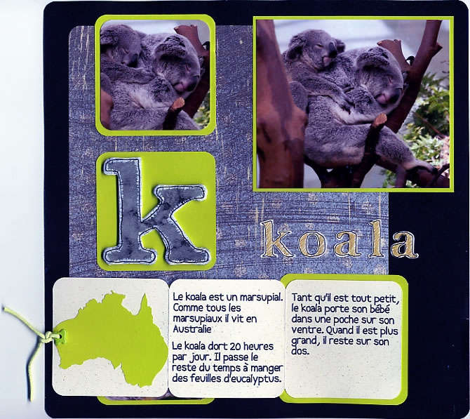 K comme Koala (K as in koala)
