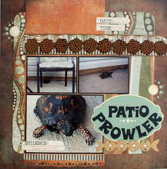 Patio Prowler