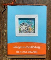 Be shellfish!