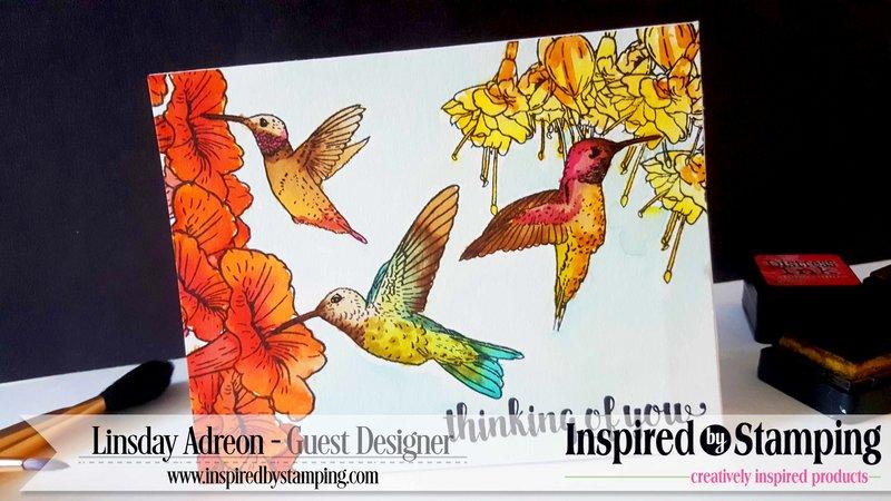 Masking Scenes - Hummingbirds