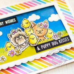 Puppy Dog Kisses | Sunny Studio