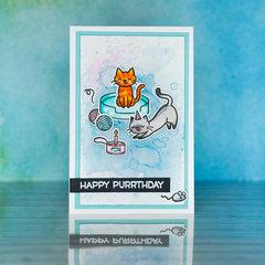 Happy Purrthday :)
