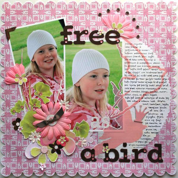 Free as a bird - survivor 8