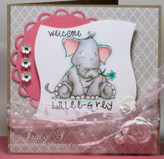 Welcome Lillee-Grey
