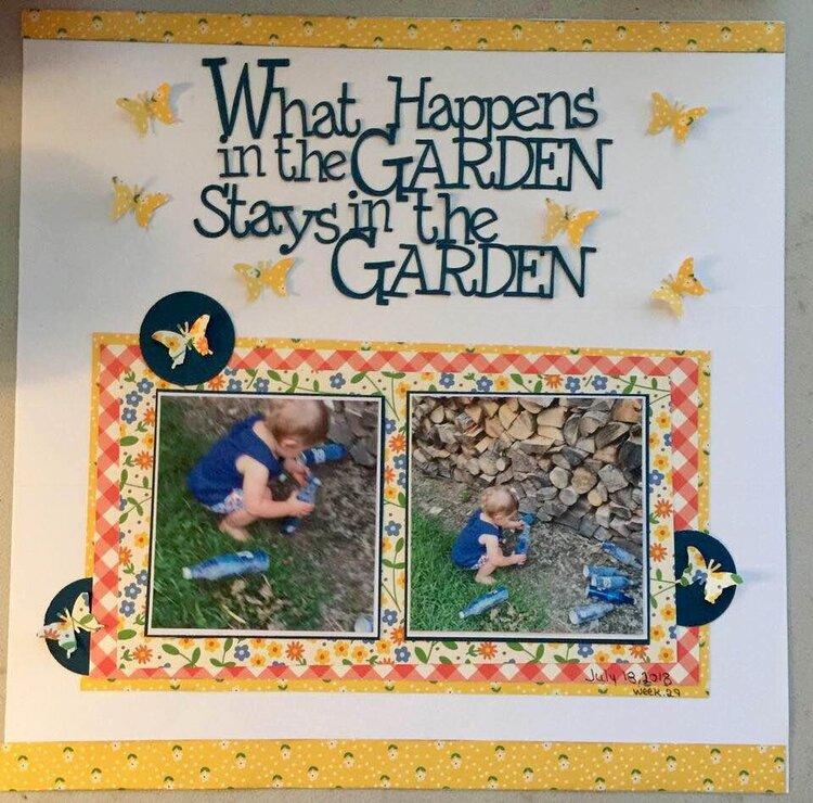 What happens in the garden...126/wk29 /2018
