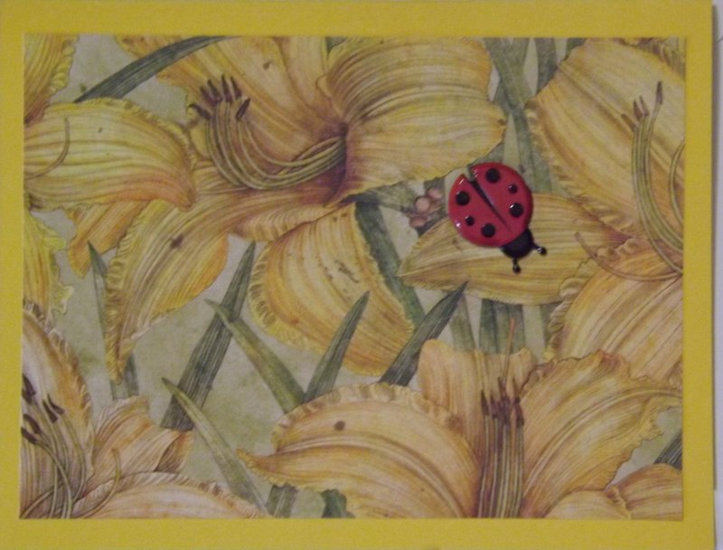 Lady Bug Notecard