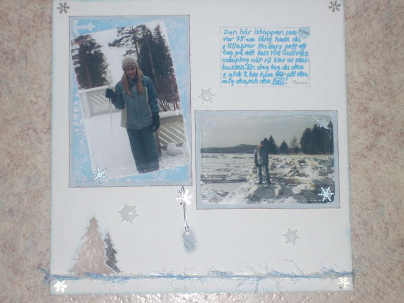 Vackra vinter /Beautiful winter