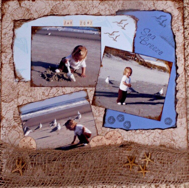 Litchfield Beach pg 2