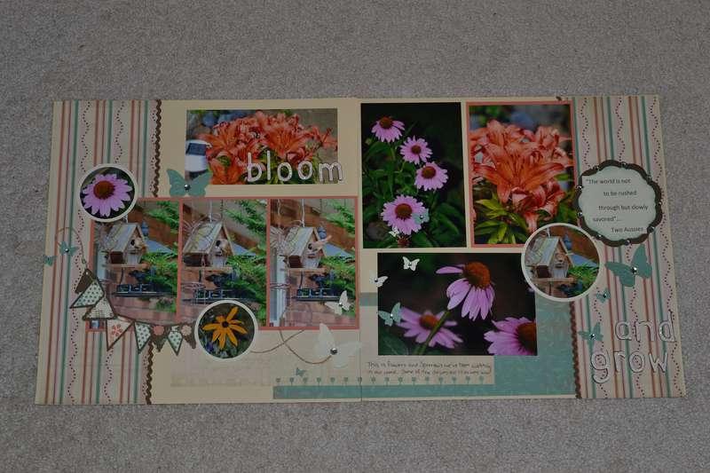LN - Bloom and Grow