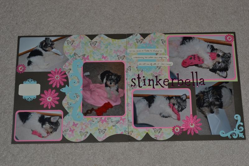 LN - Stinkerbella