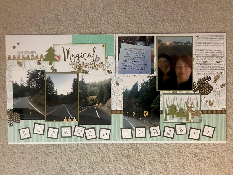 LN - The Redwoods