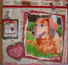 Dog Bone Times
