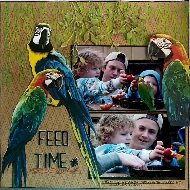 Feed Time