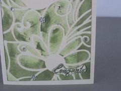 Olive bird - congrats