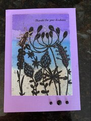 Kootsie Bug Card
