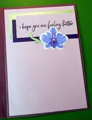 Get Well Orchids - Inside of card