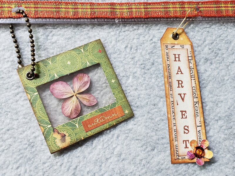Photo slide and tag embellishments