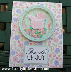 Bundle of Joy Shaker Card