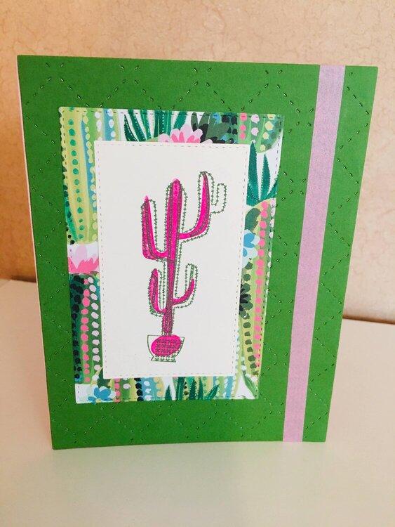 Quilted Cactus