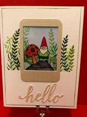 Selfie Gnome Hello
