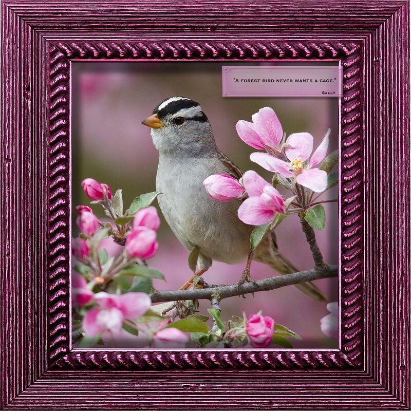 Spring Bird Magnolia Trees