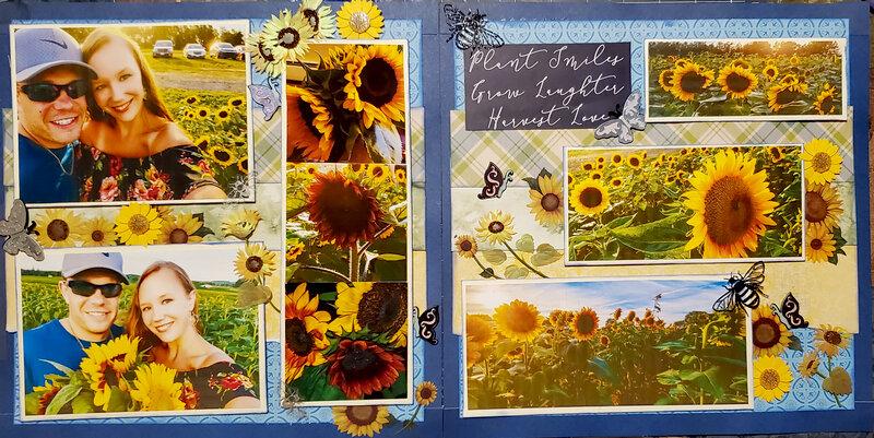 Whole sunflower layout