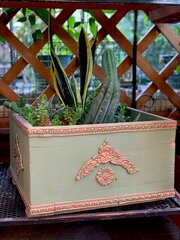 recycled box pot
