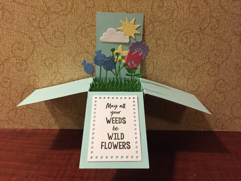 PTI SAF 2018: GARDEN WHIMSY POP-UP BOX WITH LEXI DALY