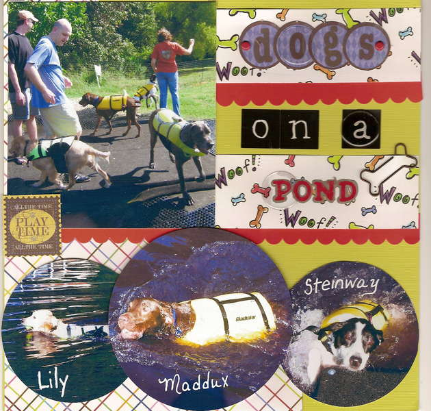 Dogs on a Pond