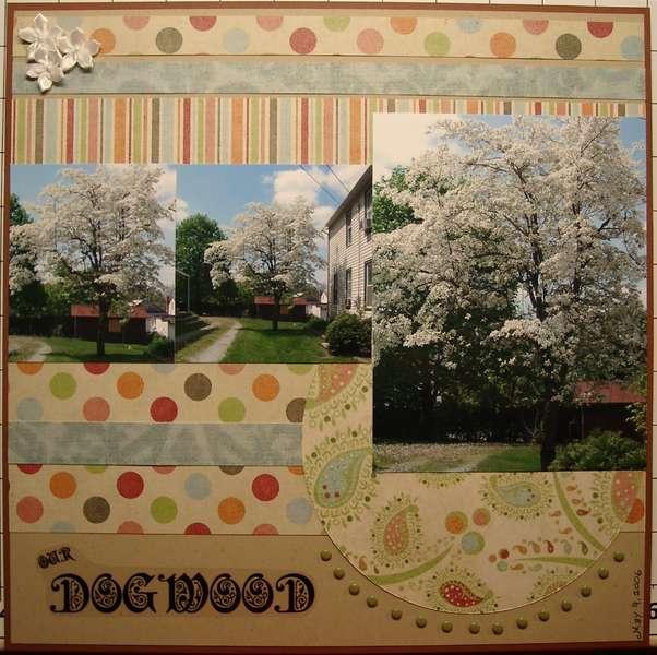 Our Dogwood