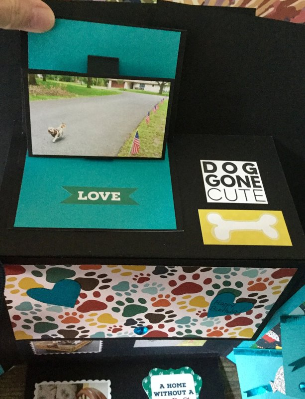 Card for Best Friend (loves teal and her Maltese Shih Tzu)