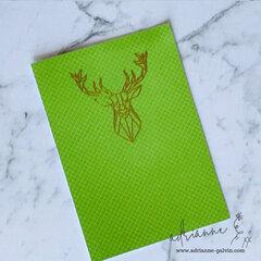 One Dimensional Geo Animal Card Set