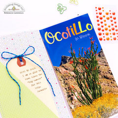 Anza Borrego Traveler's Notebook