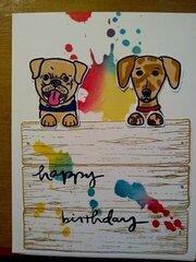 Doggie paintball bday card