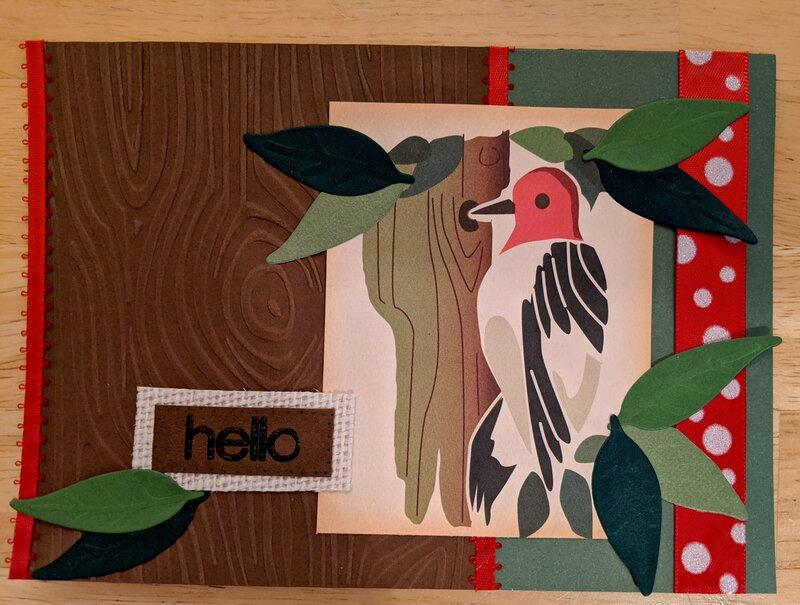 Hello - woodpecker