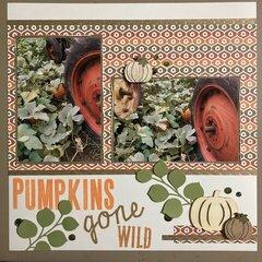 Pumpkins gone WILD (Right)