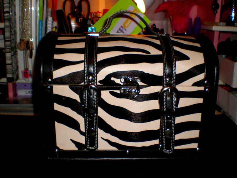 {Zebra Case}