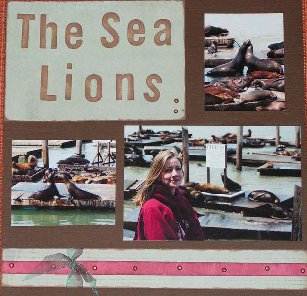 The Sea Lions on Pier 39 in San Fran