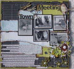 Town Meeting~