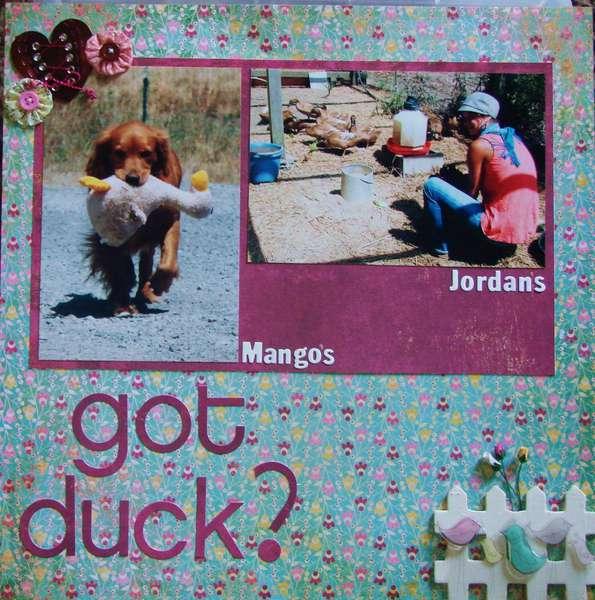 got duck?