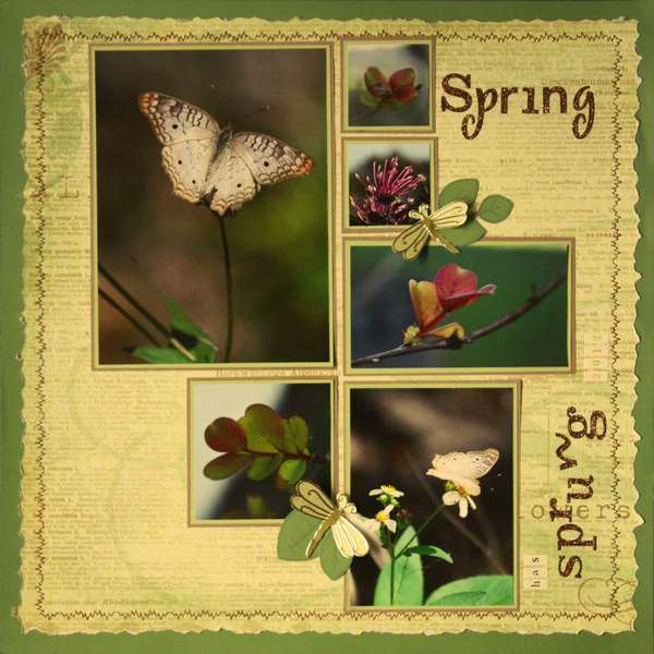 Spring has Sprung 2012