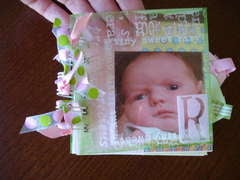 New Baby Mini Book with transparency cover