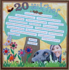 20 Wishes