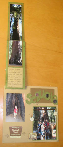 Sequoia Twist and Flip Pocket Page 3